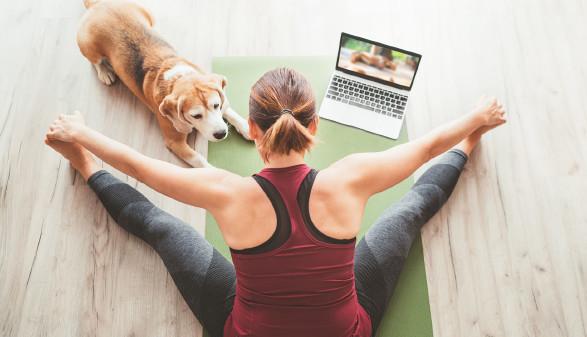 Online-Yoga-Kurs © Soloviova Liudmyla, stock.adobe.com