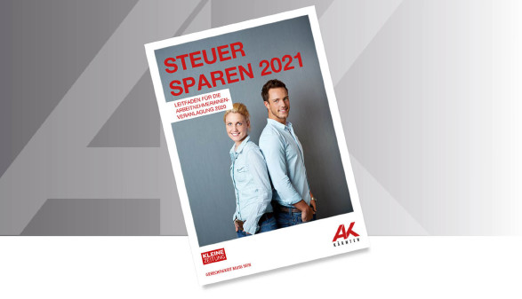 Steuer sparen 2016 © Karlheinz Fessl, bigbang