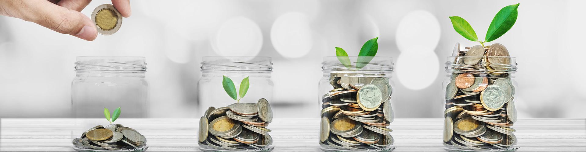 Geld wächst © sasinparaksa , stock.adobe.com